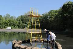 baywatchtower2